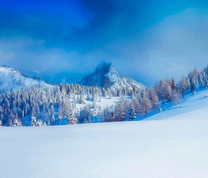 Een terugblik op onze skivakantie !